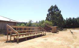 estadio Antiguo