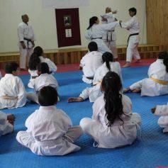 karatecas (1)