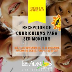 curriculums-monitores_1